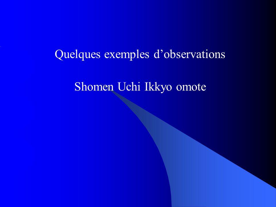 Quelques exemples d'observations Shomen Uchi Ikkyo omote