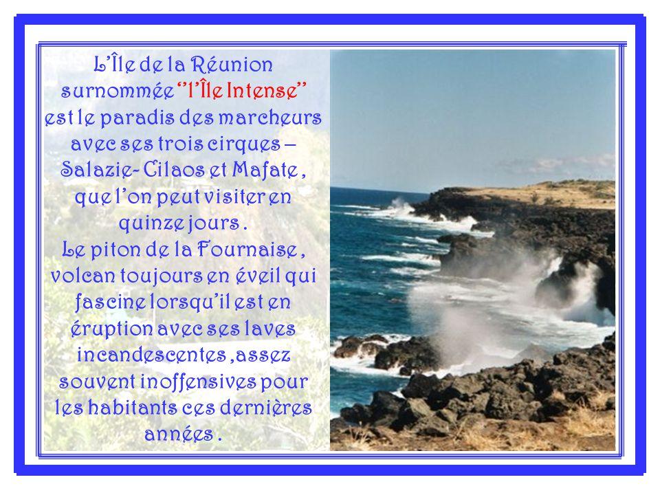 L'Île de la Réunion surnommée ''l'Île Intense'' est le paradis des marcheurs avec ses trois cirques – Salazie- Cilaos et Mafate, que l'on peut visiter en quinze jours.