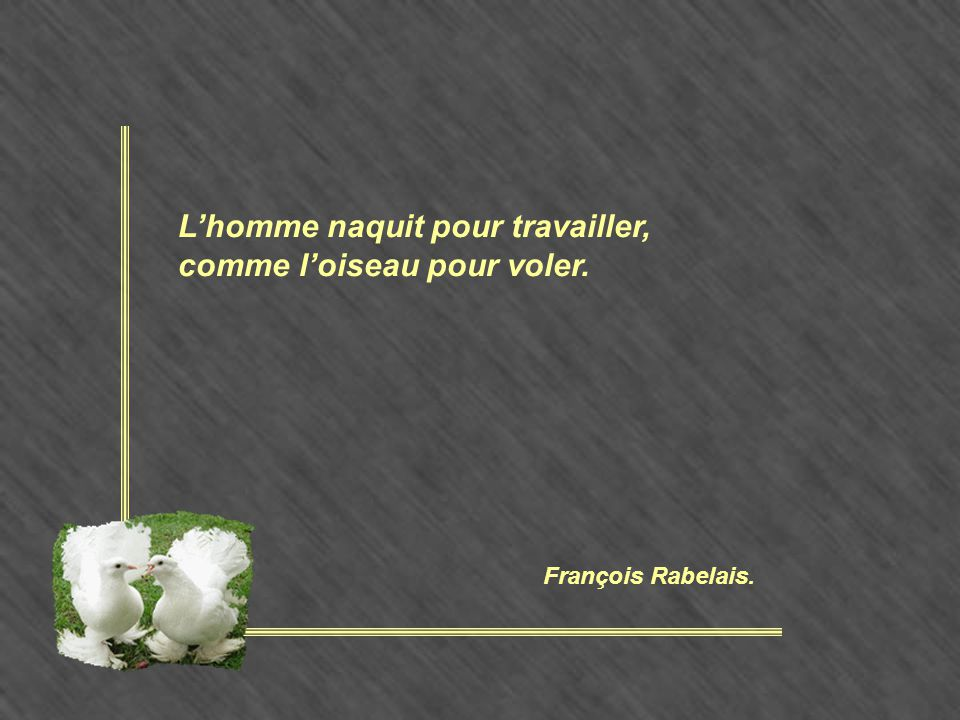 L'homme naquit pour travailler, comme l'oiseau pour voler. François Rabelais.