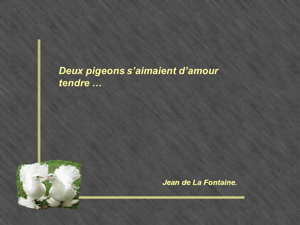 Deux pigeons s'aimaient d'amour tendre … Jean de La Fontaine.