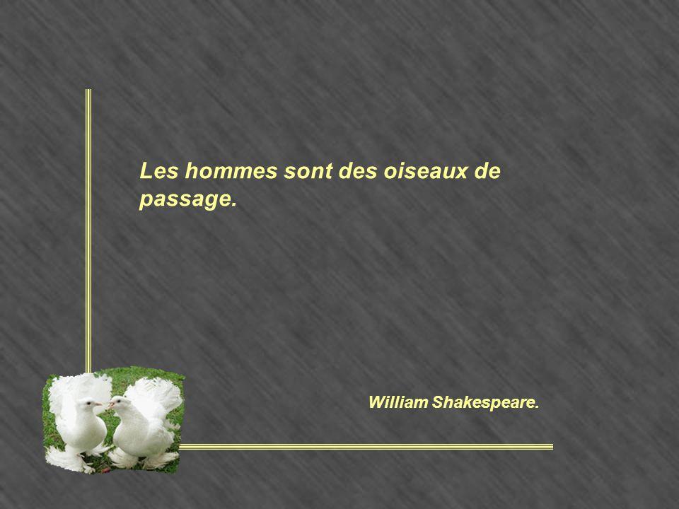 Les hommes sont des oiseaux de passage. William Shakespeare.