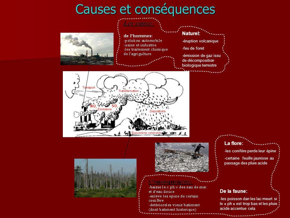 Causes et conséquences Naturel: -éruption volcanique -feu de foret -émission de gaz issu de décomposition biologique terrestre De la faune: -les poiss