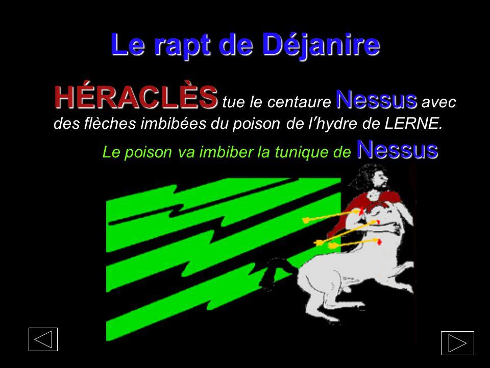Le rapt de Déjanire HÉRACLÈS Nessus HÉRACLÈS tue le centaure Nessus avec des flèches imbibées du poison de l'hydre de LERNE. Nessus Le poison va imbib