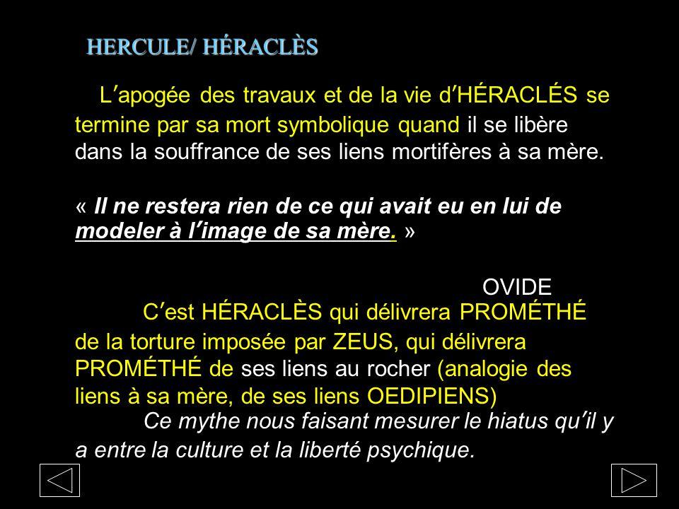 HERCULE/ HÉRACLÈS L'apogée des travaux et de la vie d'HÉRACLÉS se termine par sa mort symbolique quand il se libère dans la souffrance de ses liens mo