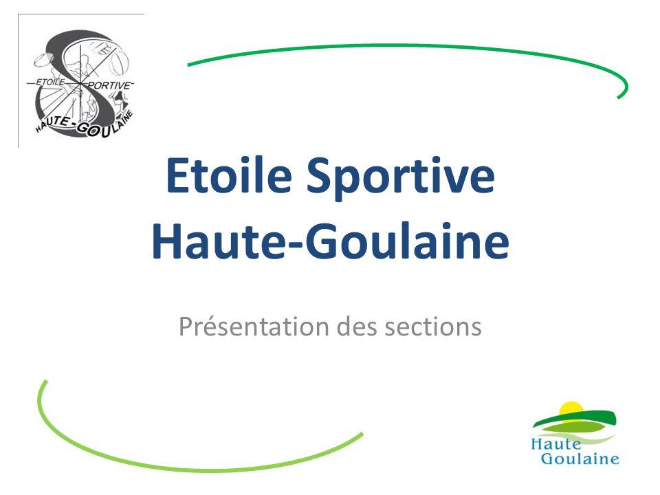 Etoile Sportive Haute-Goulaine Présentation des sections