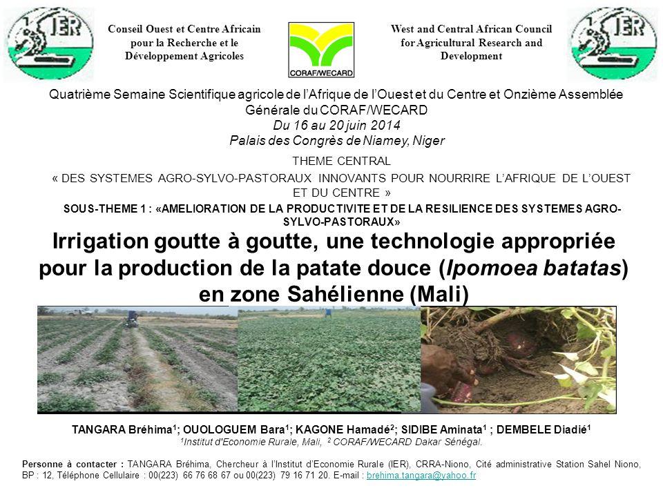 Irrigation goutte à goutte, une technologie appropriée pour la production de la patate douce (Ipomoea batatas) en zone Sahélienne (Mali) THEME CENTRAL « DES SYSTEMES AGRO-SYLVO-PASTORAUX INNOVANTS POUR NOURRIRE L'AFRIQUE DE L'OUEST ET DU CENTRE » SOUS-THEME 1 : «AMELIORATION DE LA PRODUCTIVITE ET DE LA RESILIENCE DES SYSTEMES AGRO- SYLVO-PASTORAUX» TANGARA Bréhima 1 ; OUOLOGUEM Bara 1 ; KAGONE Hamadé 2 ; SIDIBE Aminata 1 ; DEMBELE Diadié 1 1 Institut d Economie Rurale, Mali, 2 CORAF/WECARD Dakar Sénégal.