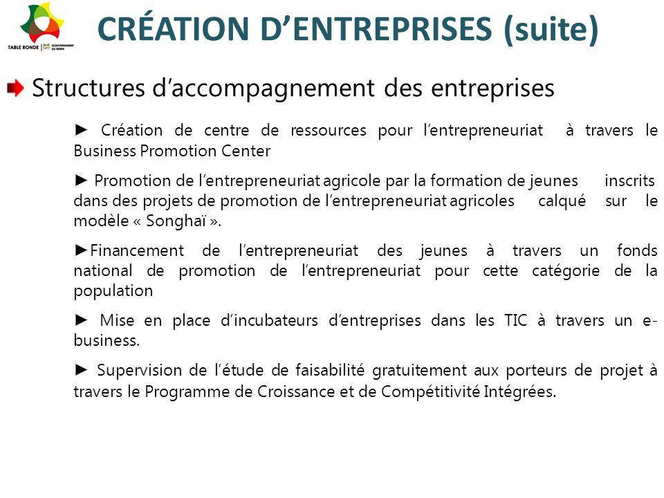 CRÉATION D'ENTREPRISES (suite) Structures d'accompagnement des entreprises ► Création de centre de ressources pour l'entrepreneuriat à travers le Busi