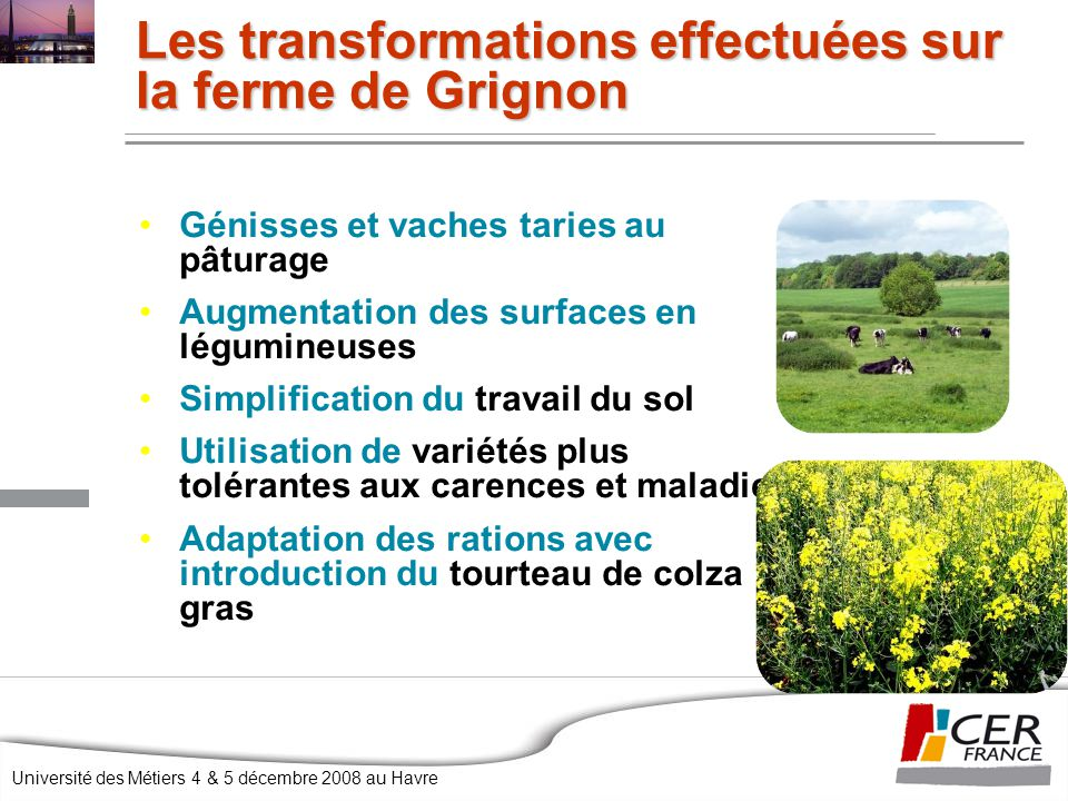 Université des Métiers 4 & 5 décembre 2008 au Havre Génisses et vaches taries au pâturage Augmentation des surfaces en légumineuses Simplification du