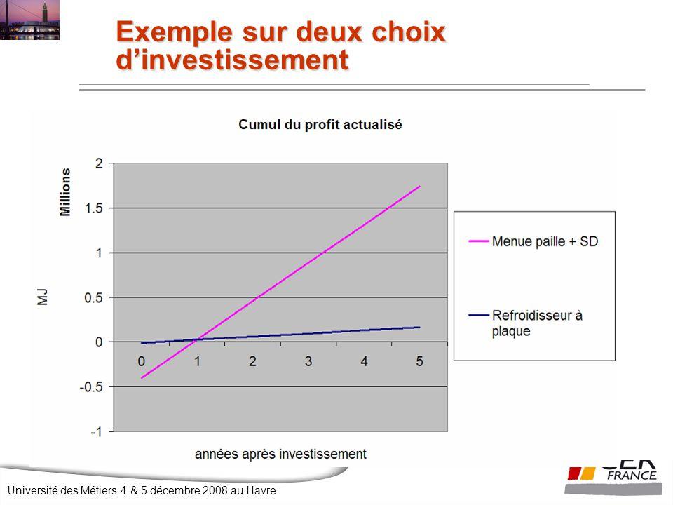 Université des Métiers 4 & 5 décembre 2008 au Havre Exemple sur deux choix d'investissement