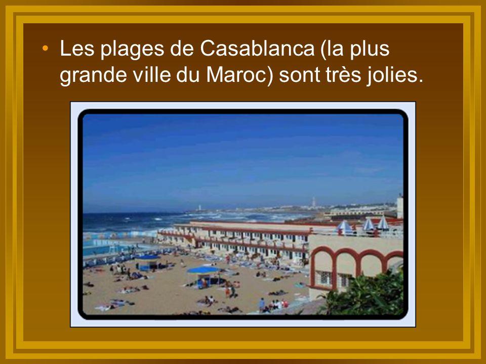 Les plages de Casablanca (la plus grande ville du Maroc) sont très jolies.