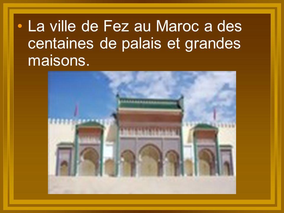 La ville de Fez au Maroc a des centaines de palais et grandes maisons.