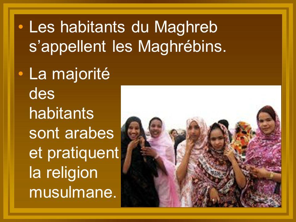 Les habitants du Maghreb s'appellent les Maghrébins. La majorité des habitants sont arabes et pratiquent la religion musulmane.