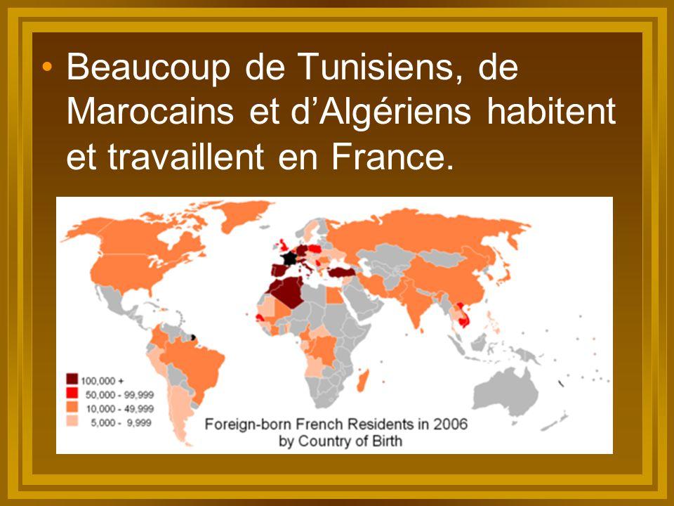Beaucoup de Tunisiens, de Marocains et d'Algériens habitent et travaillent en France.