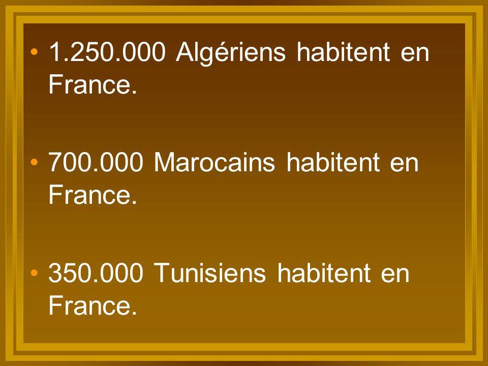 Par conséquent… Les cultures maghrébines one une très grande influence en France, ce qu'on étudieria plus tard.