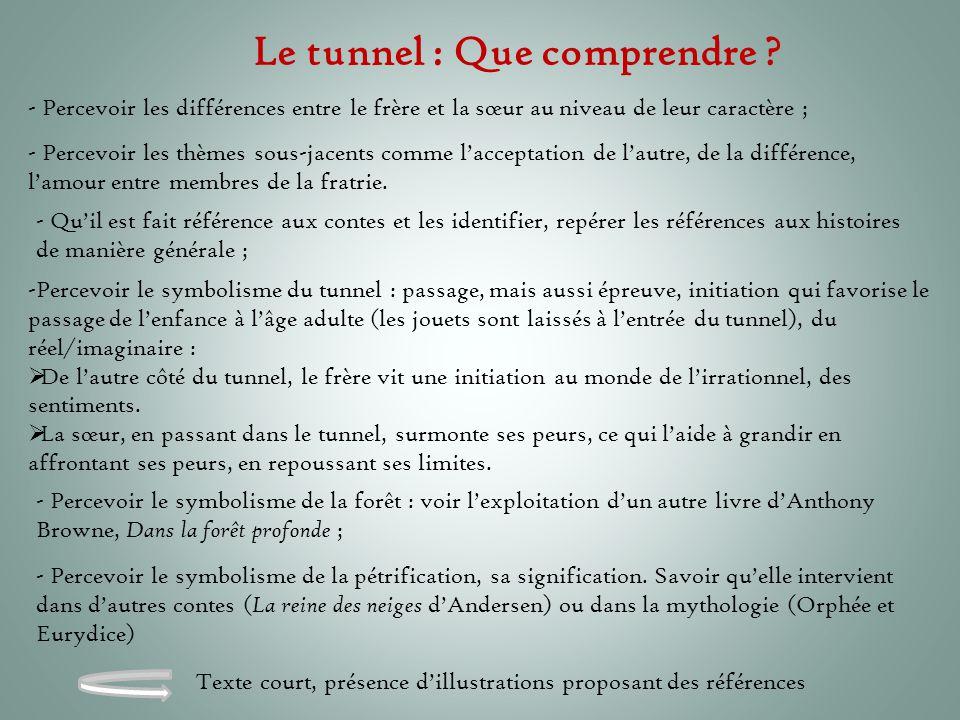 Le tunnel : Que comprendre ? - Percevoir les différences entre le frère et la sœur au niveau de leur caractère ; - Percevoir les thèmes sous-jacents c
