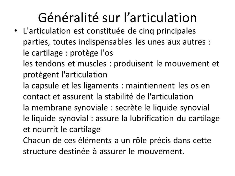 Généralité sur l'articulation L'articulation est constituée de cinq principales parties, toutes indispensables les unes aux autres : le cartilage : pr