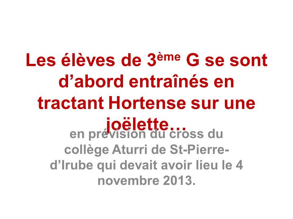 Les élèves de 3 ème G se sont d'abord entraînés en tractant Hortense sur une joëlette… en prévision du cross du collège Aturri de St-Pierre- d'Irube qui devait avoir lieu le 4 novembre 2013.