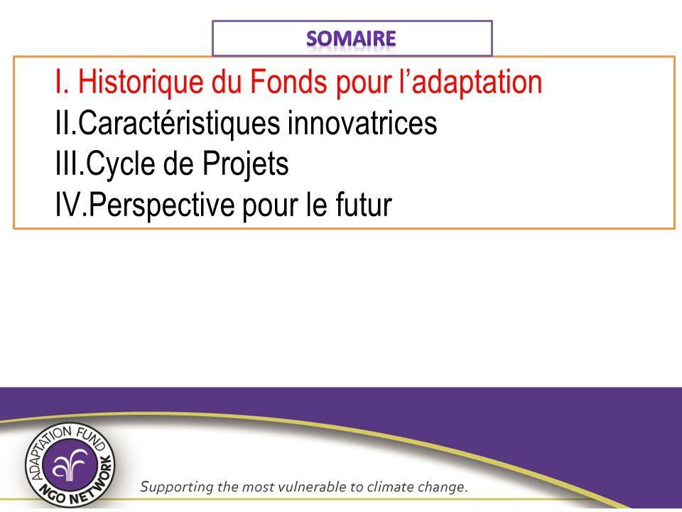 1.Le paysage financement Adaptation est fragmenté et incohérent 2.Article 12.8 du Protocole de Kyoto: prévoit qu'une part des fonds provenant d'activités certifiées du mécanisme de MDP soit utilisée pour aider les pays en développement particulièrement vulnérables à assumer les coûts de l'action d'adaptation 3.Les Accords de Marrakech, adoptés en 2001, disposent que 2 % des montants générés de la monétisation des unités de réduction certifiées des émissions URCE des projets du Mécanisme de Développement Propre seront versés au Fonds d'adaptation.