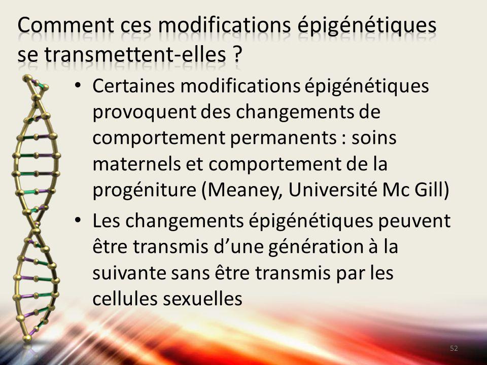 Certaines modifications épigénétiques provoquent des changements de comportement permanents : soins maternels et comportement de la progéniture (Meane