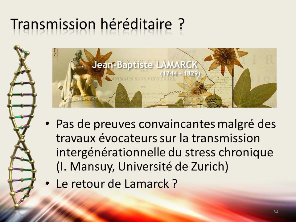 Pas de preuves convaincantes malgré des travaux évocateurs sur la transmission intergénérationnelle du stress chronique (I. Mansuy, Université de Zuri