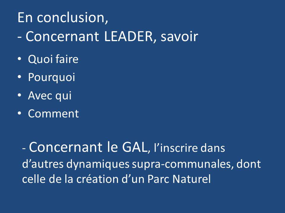 En conclusion, - Concernant LEADER, savoir Quoi faire Pourquoi Avec qui Comment - Concernant le GAL, l'inscrire dans d'autres dynamiques supra-communales, dont celle de la création d'un Parc Naturel