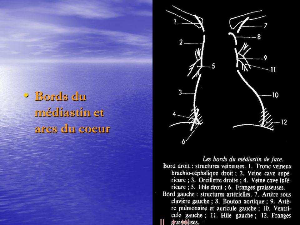 Bords du médiastin et arcs du coeur Bords du médiastin et arcs du coeur