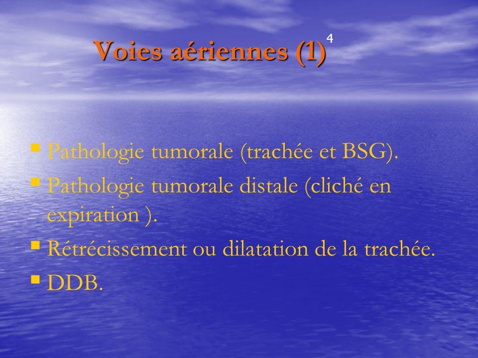 Voies aériennes (1) Voies aériennes (1)   Pathologie tumorale (trachée et BSG).   Pathologie tumorale distale (cliché en expiration ).   Rétréci