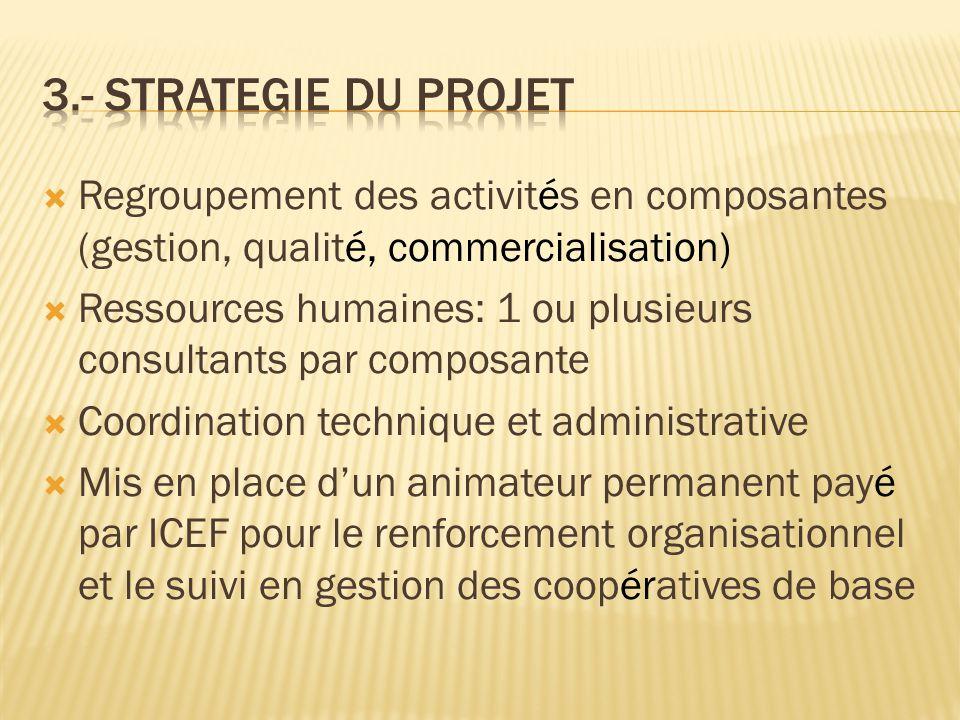  Regroupement des activités en composantes (gestion, qualité, commercialisation)  Ressources humaines: 1 ou plusieurs consultants par composante  C