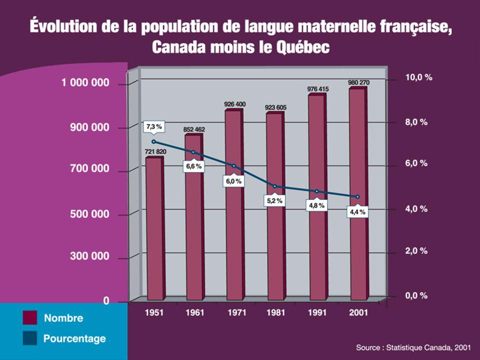 Le projet de l'immigration francophone 2004: début de réflexion sur la diversité et l'immigration francophone Table de concertation sur l'immigration francophone (SAANB) 2006: fondation du CAIIMM Immigration francophone en milieu rural (le CIR)
