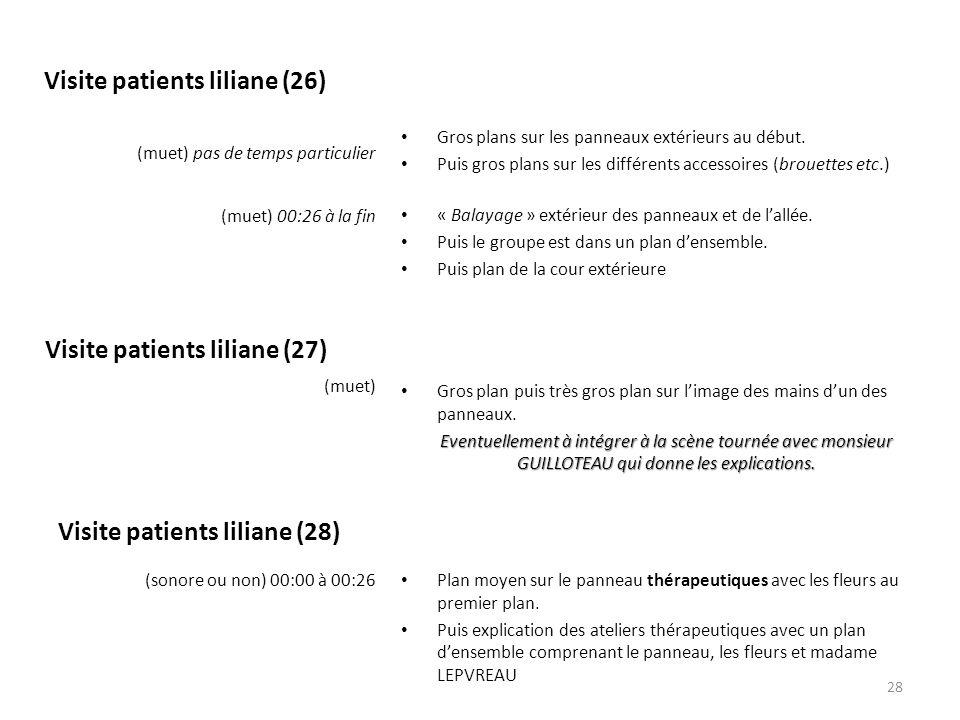 Visite patients liliane (26) (muet) 00:26 à la fin Gros plans sur les panneaux extérieurs au début.