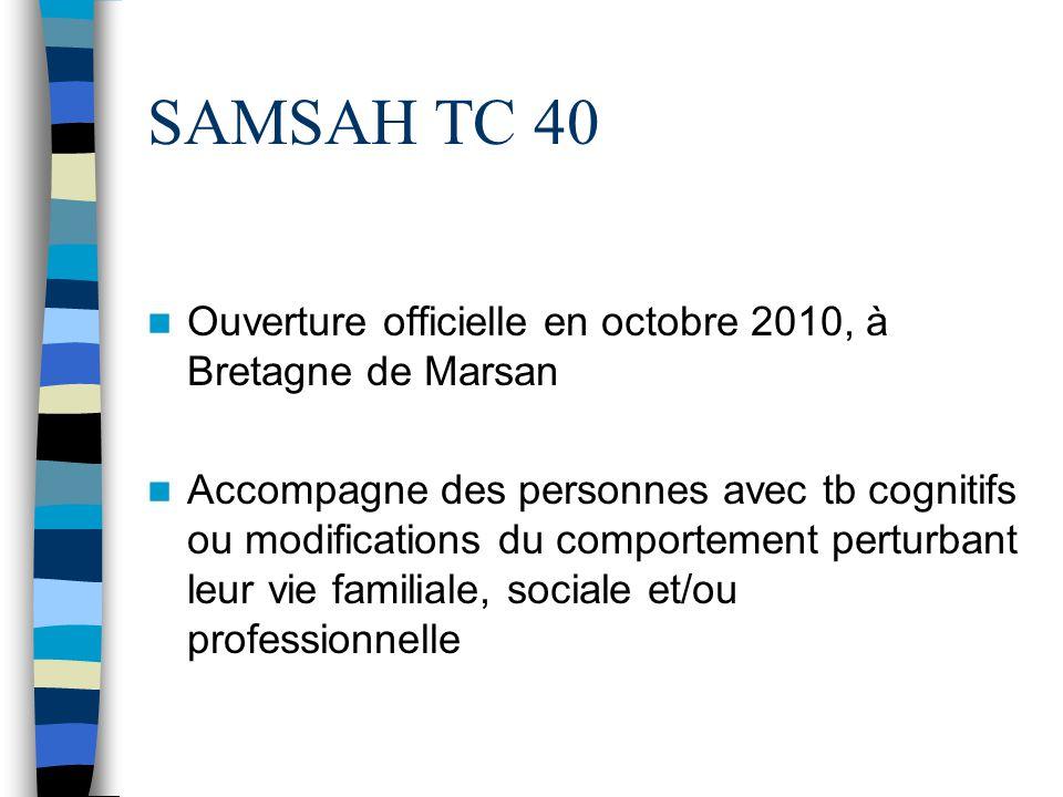 SAMSAH TC 40 Ouverture officielle en octobre 2010, à Bretagne de Marsan Accompagne des personnes avec tb cognitifs ou modifications du comportement pe