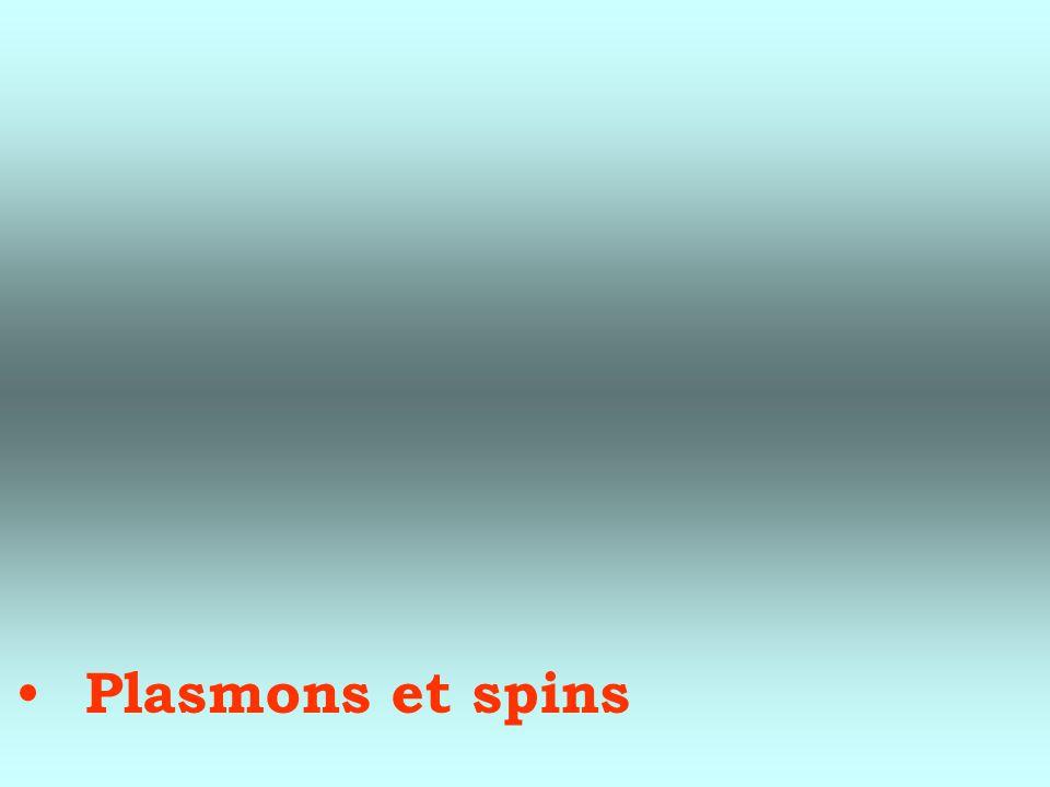 Plasmons et spins