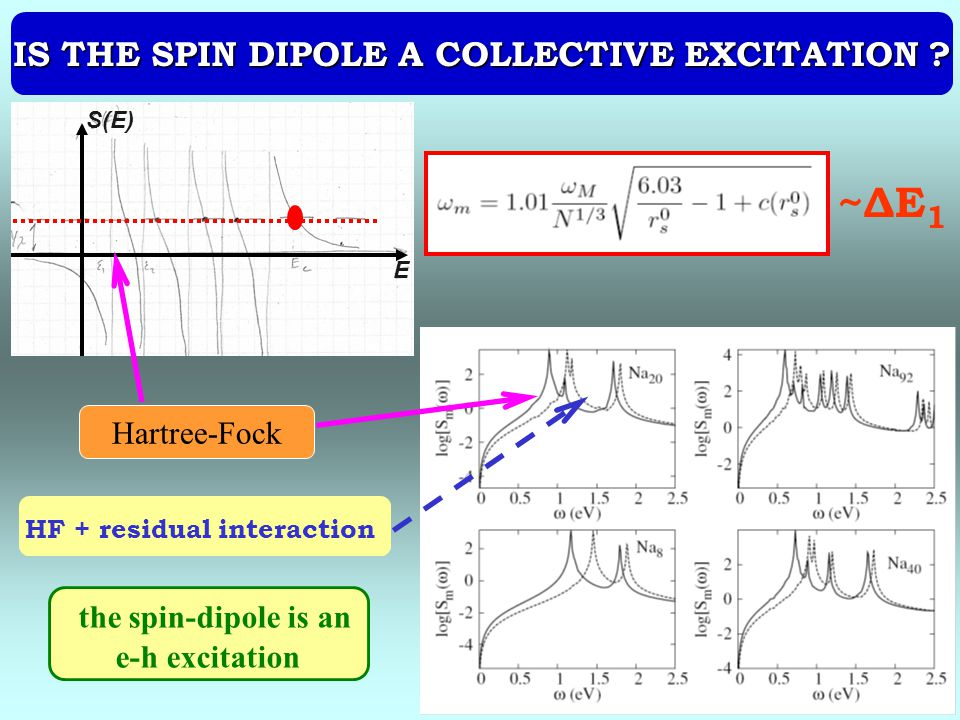 IS THE SPIN DIPOLE A COLLECTIVE EXCITATION .