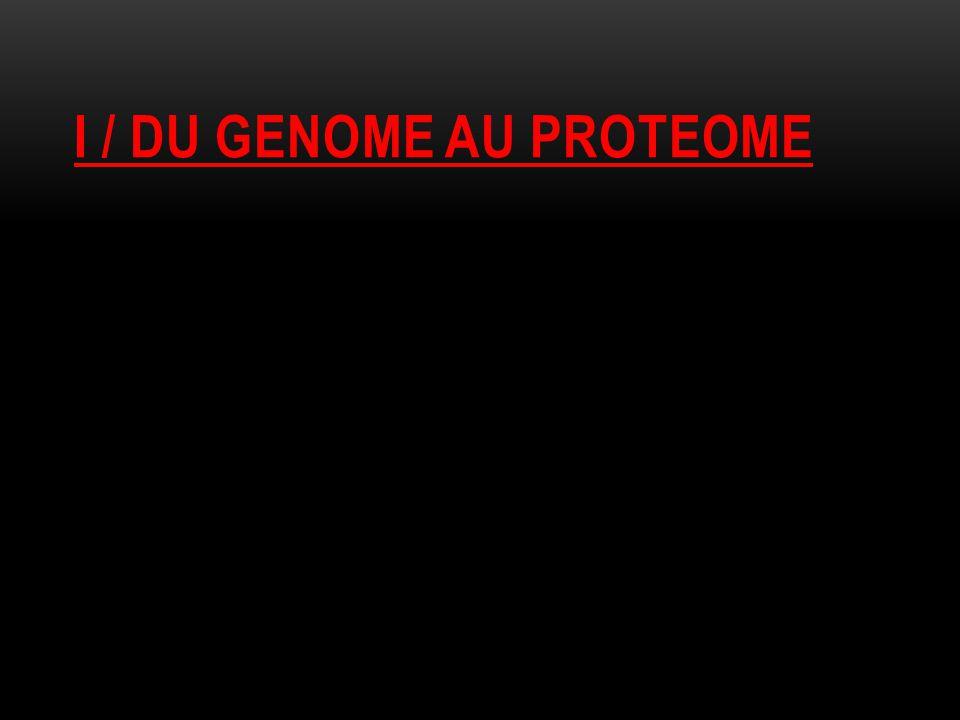 I / DU GENOME AU PROTEOME