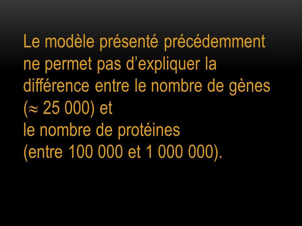 Le modèle présenté précédemment ne permet pas d'expliquer la différence entre le nombre de gènes (  25 000) et le nombre de protéines (entre 100 000 et 1 000 000).