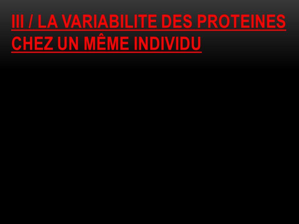 III / LA VARIABILITE DES PROTEINES CHEZ UN MÊME INDIVIDU