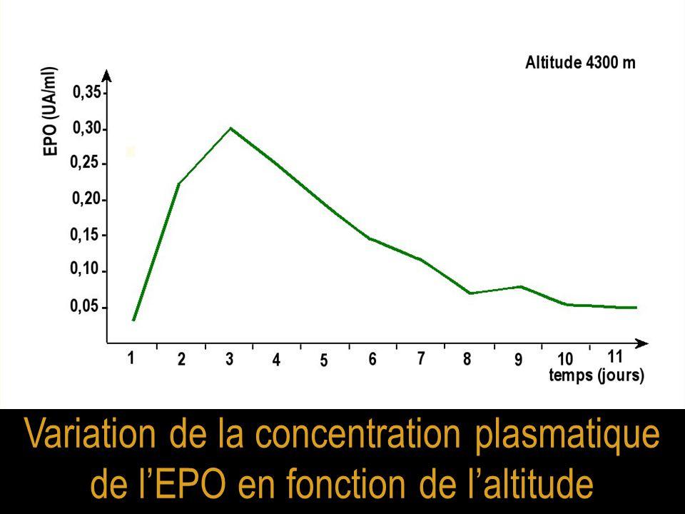 Variation de la concentration plasmatique de l'EPO en fonction de l'altitude