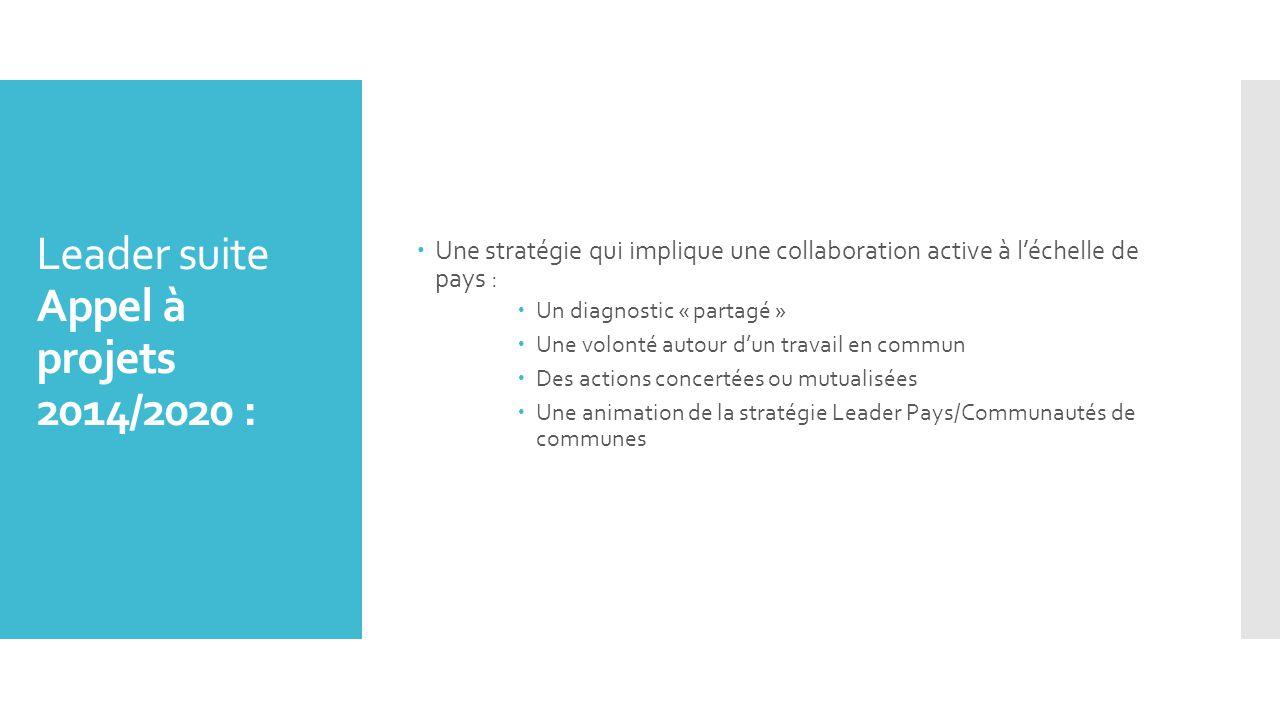  Une stratégie qui implique une collaboration active à l'échelle de pays :  Un diagnostic « partagé »  Une volonté autour d'un travail en commun  Des actions concertées ou mutualisées  Une animation de la stratégie Leader Pays/Communautés de communes