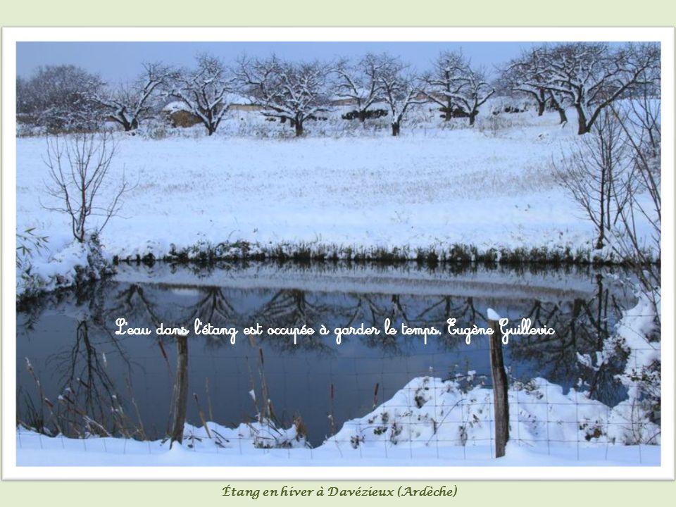 Un lac réfléchit mieux les étoiles qu une rivière.