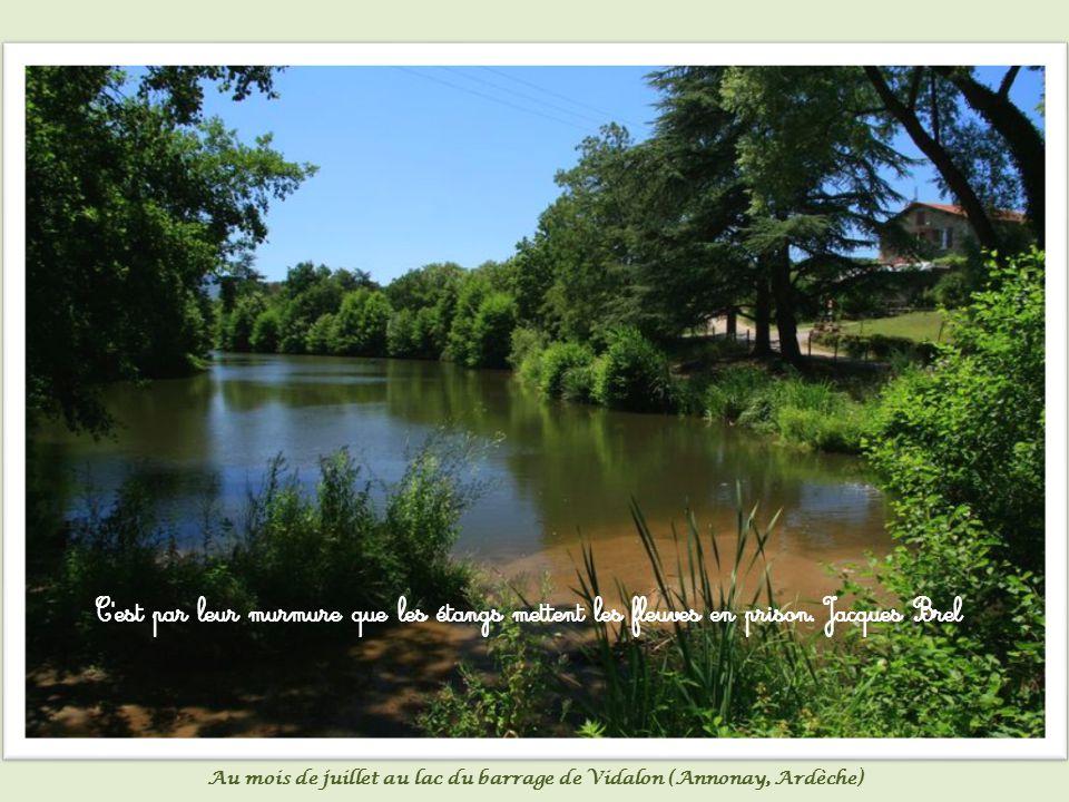 L homme est un fleuve, la femme est un lac.