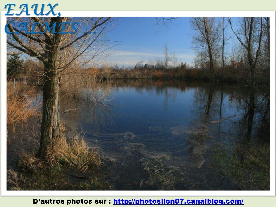 Le lac Ipotesti (Roumanie), rattaché au souvenir du poète Mihai Eminescu (1850-1889) Je te vois ravie par le charme murmurer de ta douce voix, pendant que tu tends le pied nu dans l eau limpide au pur éclat.