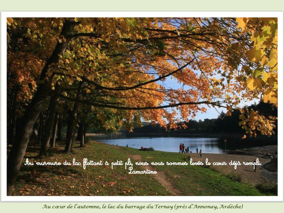Si la vie est immédiate et verte au bord des étangs, pour la rejoindre, il nous faut d abord rejoindre ce qui en nous est comme de l eau, comme de l air, comme du ciel.