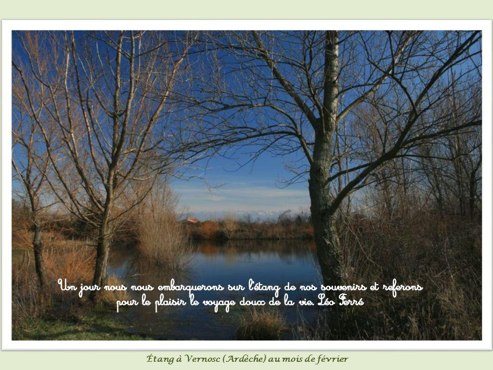 Au murmure du lac flottant à petit pli, nous nous sommes levés le cœur déjà rempli.