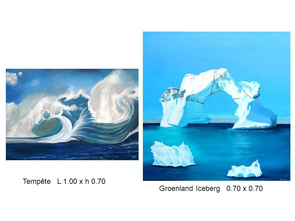 Tempête L 1.00 x h 0.70 Groenland Iceberg 0.70 x 0.70