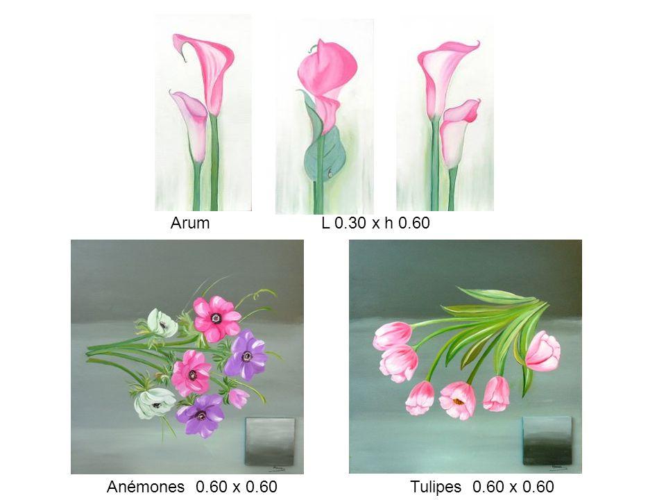 Arum L 0.30 x h 0.60 Anémones 0.60 x 0.60 Tulipes 0.60 x 0.60