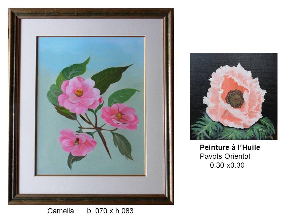 Peinture à l'Huile Pavots Oriental 0.30 x0.30 Camelia b. 070 x h 083