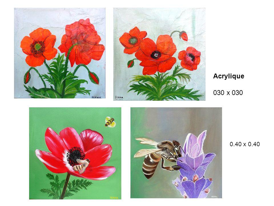Acrylique 030 x 030 0.40 x 0.40
