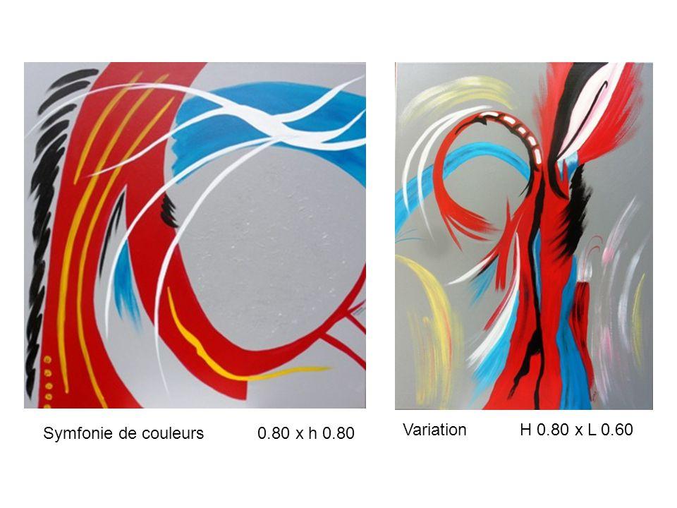 Symfonie de couleurs 0.80 x h 0.80 Variation H 0.80 x L 0.60