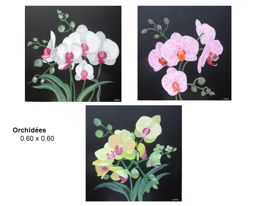 Orchidées 0.60 x 0.60