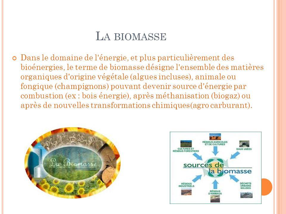 L A BIOMASSE Dans le domaine de l'énergie, et plus particulièrement des bioénergies, le terme de biomasse désigne l'ensemble des matières organiques d